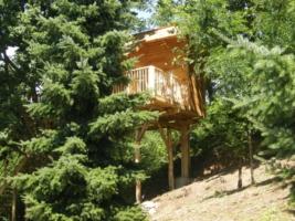 La casa sull 39 albero - Il giardino dei semplici manta ...